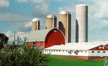 bindl sales is your source for quality silo doors and other accessories we carry products from great lakes silos kastrite and madison - Silos